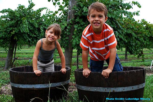 August in Orlando - Lakeridge Winery