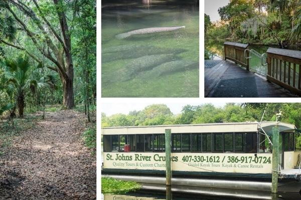 Blue Springs - State Parks Near Orlando