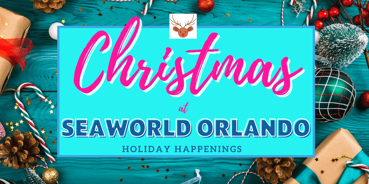 SeaWorld Orlando Christmas Celebration 2020 | Orlando Insider