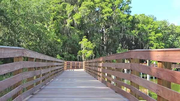 Day Trips from Orlando - Palm Park