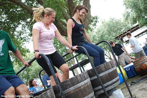 Orlando in June  Lakeridge Winery Harvest Festival