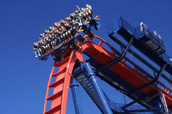 Busch Gardens Tampa Thrills And Animals In Harmony