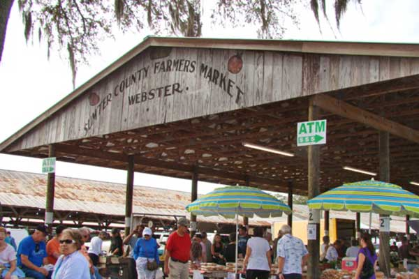 Webster Flea Amp Farmers Market Orlando Insider Vacations